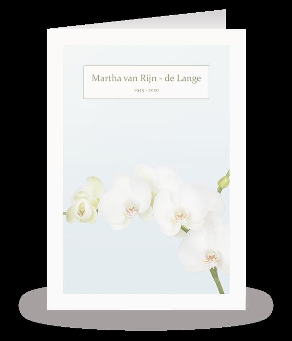 Kaart met orchidee 1