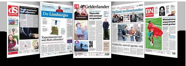 Alle kranten 33
