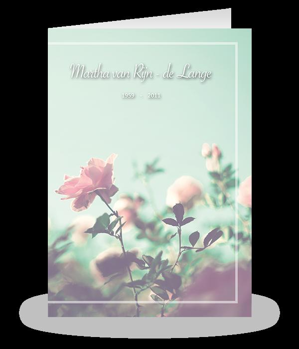 Roze rozen 1